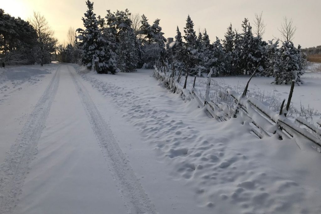 Dagen Haus teerada talvel