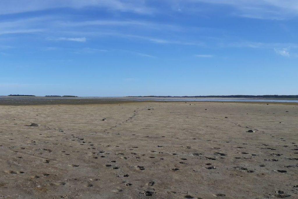 Hiiumaa merepiir 2018 kevad